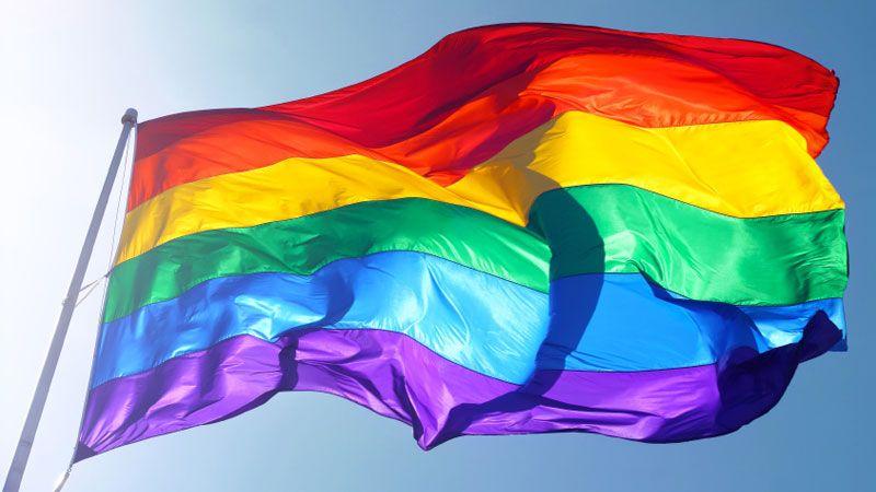 Parada Gay 2014